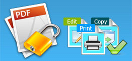 remove print restriction from pdf
