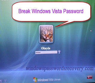 break windows vista password