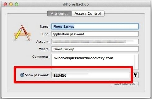iphone 5c backup password recovery